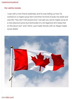 America has drug dealers. Canada has maple syrup dealers lol Tumblr Stuff, Funny Tumblr Posts, My Tumblr, Funny Cute, The Funny, That's Hilarious, Canadian Things, Pokemon, Looks Cool