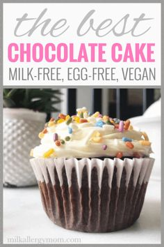 The Perfect Chocolate Cake with No Milk or Egg - Easy Dairy and Egg Free Chocolate Wacky Cake Recipe Egg Free Chocolate Cake, Vegan Chocolate Cupcakes, Perfect Chocolate Cake, Amazing Chocolate Cake Recipe, Chocolate Chip Muffins, Chocolate Recipes, Wacky Cake Recipe, Allergy Free Recipes, Kid Recipes