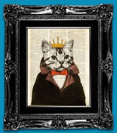 The Cat King!!!