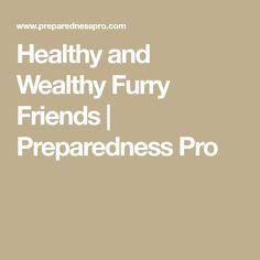 Healthy and Wealthy Furry Friends | Preparedness Pro