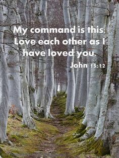 """John 15:12 """"My command is this: that you love each other as I have loved you."""" ~ To which I respond: """"Yes, Lord. For if I don't love others as you have loved me, then your death would mean nothing to me. But it means everything, so I will do as you command."""" please help the persecuted christians support www.opendoors.org"""