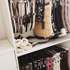 Why do you think is it essential to consider the proper suggestions in acquiring the equestrian boots to be utilized with or without any horseback riding competitors? Dream Stables, Horse Stables, Horse Barns, Equestrian Outfits, Equestrian Style, Tack Room Organization, Horse Tack Rooms, English Horse Tack, Horse Riding Clothes