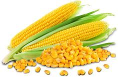 Commodity Basis provides cash future price information for corn for several continents such as United States, South America, Europe,  Asia etc. If you need to know the updated cash price for corn then visit our website at www.commoditybasis.com or call us on 0641060510 for further information.