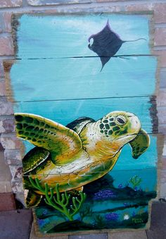 Sea turtle love
