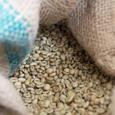 100% Arabica Shops, Kaffee, Tents, Retail Stores