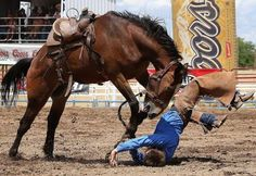 Bryce Quinn is thrown from his horse as he competes in the Bronc Riding at the Prescott Frontier Days 'World's Oldest Rodeo' in Arizona.