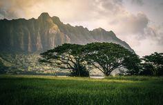 Koʻolau pali Oahu [20481320] (OC) #reddit