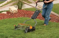 Are you mowing your lawn environmentally friendly way?