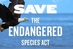 SAVE THE ENDANGERED SPECIES ACT