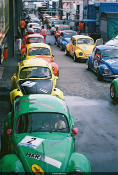 vw beetle racing