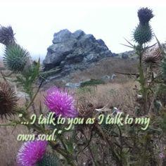 Diana Gabaldon Outlander quote.