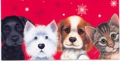 images of wordpress christmas | CATS AND DOGS A GREETING CARD | Marges8's Blog