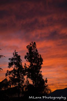 Fire in the sky, sunset 30 June 2014