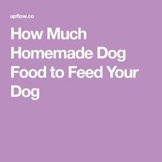 How Much Homemade Dog Food to Feed Your Dog