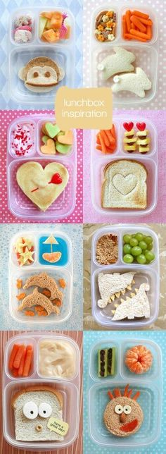 Cute lunch box insparations