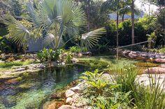 Schwimmteich typ single manzke landschaftsplanung pool for Gartenpool ohne chemie