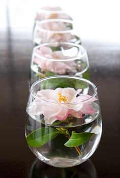 Camellia arrangements don't get much simpler than this! Buy a box of those stemless wineglasses, fill with cool water, and float cut Apple Blossom Camellia flowers. Set a line of them down the length of a dining room table for an informal touch.