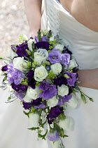 purple lilac cream wedding bouquet     common purple wedding flowers are crocus, pansy, gladiolas, iris, cone flower, sweet pea, alyssum, snap dragons, clematis, aster and Verbena.