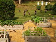 Farmstead Raised Bed Garden