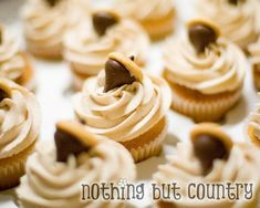 Thanksgiving Pumpkin pie buttercream cupcakes with cookie Acorn topper and yummy pumpkin pie pudding  center! YUM!!!