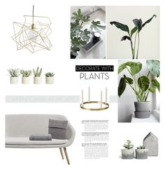 """GREEN HOME"" by canvas-moods ❤ liked on Polyvore featuring interior, interiors, interior design, home, home decor, interior decorating, Allstate Floral, HAY, Brunello Cucinelli and MM6 Maison Margiela"