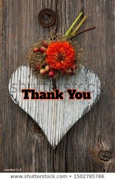 Thank You Messages Gratitude, Thank You Wishes, Thank You Quotes, Thank You Cards, Happy Mothers Day Wishes, Online Pet Supplies, Wooden Hearts, Give Thanks, Picture Quotes
