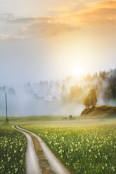 Don't need wild scenery from the ends of the earth. A country road and a sunrise will do just fine. What A Wonderful World, Beautiful World, Beautiful Places, Beautiful Pictures, Country Life, Country Roads, Wow Photo, Espanto, All Nature