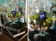 But age the tardis so it blends in? Terrarium project - with an added Doctor Who bonus! Makes me think of the Time of the Angels.Amy sitting in the middle of a forest, eyes closed, counting down. Geek Crafts, Diy Arts And Crafts, Diy Crafts, Terrarium Closed, Terrarium Diy, Diy Doctor, Doctor Who Party, Dr Who, Tardis
