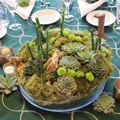 #tabletoptuesday GREENERY #Pantone trend or not, we've always loved a setting full of green! . . . #succulent #echeveria #organic #wood #equisetum #moss #eventprofs #eventpros #design #eventdesign #floraldesign #eventdecor #eventstyling #eventrentals #flowers #linens #asseenincolumbus #livecbus  #corporateevents #ilea #myilea #decor #mitzvah #celebrate #hemstitch #placecards #calligraphy #evedeso #eventdesignsource - posted by Flourish Bespoke https://www.instagram.com/flourishbespoke. See…