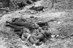 Flies infest the bodies of dead Germans at the sunken road at Guillemont following the Battle of Guillemont in September 1916