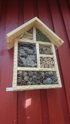 Bird Feeders, Bees, Choices, Butterflies, Diy Ideas, Projects To Try, Outdoors, Patio, Garden