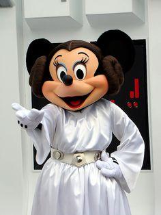 Princess Leia Minnie Mouse!