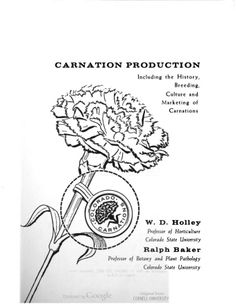 Carnation Production including the History, breeding, Culture and Marketing of Carnations by W. D. Holley And Ralph Baker