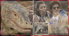 गिरगिट से डराए जाने पर एंकर पर भड़के शाहरुख खान, फिर जो हुआ..देखिए विडियो