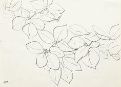 Henri Matisse, Branche de Fleurs, c. 1945