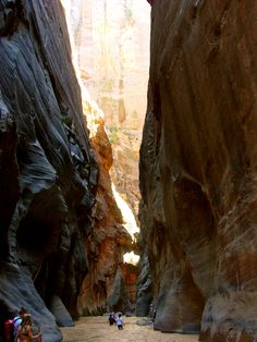 Took this pictures in the Narrows at Zion National Park.  My all-time favorite hike.