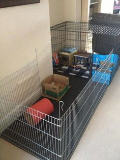 x pen/dog crate rabbit housing