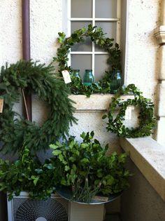 Kränze aus Tanne und Stechpalme Winter, Plants, Weihnachten, Winter Time, Flora, Plant, Winter Fashion