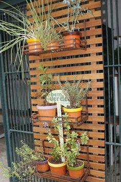 Aprenda em 6 passos a montar a sua horta orgânica em casa