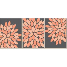 Wall Art CANVAS or Prints Charcoal Peach Coral Bedroom Kitchen Wall... (110 RON) ❤ liked on Polyvore featuring home, home decor, wall art, canvas picture, three piece canvas wall art, flower wall art, flower picture and blossom wall art