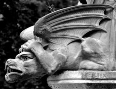 Gargoyles - spend their day as stone warding off evil, but come to life at night to join in the persistent battle for man's soul. Dragons, Gothic Gargoyles, Angels And Demons, Gothic Architecture, Green Man, Stone Art, Mythical Creatures, Beast, Griffins