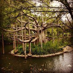 Zoo habitat...  Fewer trees along lake shore to make exhibit pop