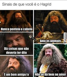 Krl eu sou o Hagrid Harry Potter Tumblr, Memes Do Harry Potter, Harry Potter Fan Art, Harry Potter World, Harry Potter Hogwarts, Best Memes, Funny Memes, Jokes, Hermione Granger