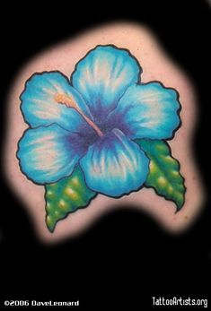 Image Titled Blue Hibiscus Posted By DaveLeonard To Gallery Page Color On