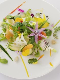 By chef Michel Bras at Bras. © Bras - See more at: http://theartofplating.com/news/world-vegetarian-day/