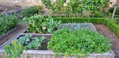 Uso sustentável de #água na #horta e #jardim Qual é o melhor momento para regar? Evitar a rega durante o momento de maior de calor do dia, este faz com que a água se evapore e seja desperdiçada. Deve regar-se ao final do dia. Mais em http://www.agrozapp.pt/noticia/8-conselhos-para-o-uso-sustentavel-da-agua-em-hortas-e-jardins