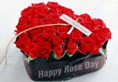 Rose Day Images for whatsapp 2016 | Rose day Pictures for whatsapp | Rose day Free images for Pinterest | Happy Rose day Wallpapers 2016 Rose day 2016