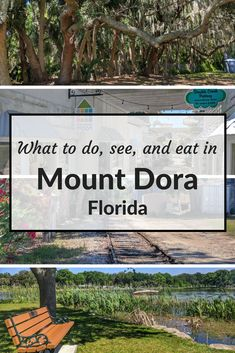 Mount Dora | What to do in Mount Dora | Things to do in Mount Dora | Mount Dora, Florida | Places to eat in Mount Dora | Travel with kids | Family travel | Visit Florida | Visit Central Florida #mountdora #visitflorida #visitcentralflorida