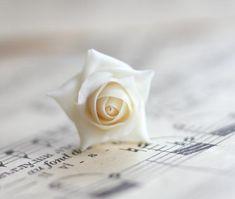 Bridal hair clip Ivory hair rose pins bridal hair pieceVintage flower ivory floral hair pins we Wedding Garter Lace, Wedding Gloves, Wedding Hair Pins, Bridal Lace, Whimsical Wedding Flowers, White Wedding Flowers, Rose Vintage, Vintage Flowers, Wedding Fascinators