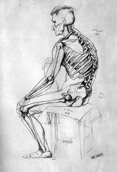 Exceptional Drawing The Human Figure Ideas. Staggering Drawing The Human Figure Ideas. Male Figure Drawing, Figure Drawing Reference, Anatomy Reference, Life Drawing, Drawing Faces, Pose Reference, Anatomy Bones, Body Anatomy, Anatomy Organs